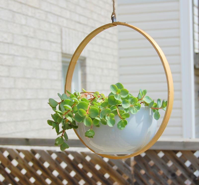 With the help of embroidery hoop you can make your low cost planter and use it anywhere in your home or garden.