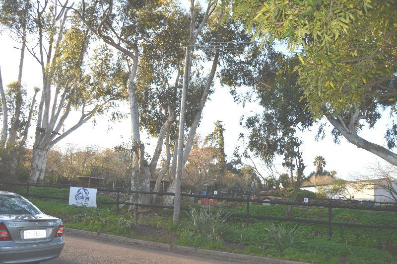 Property For Sale in Schoongezicht, Durbanville 45